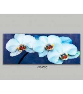 Cuadro cristal flores orquídeas