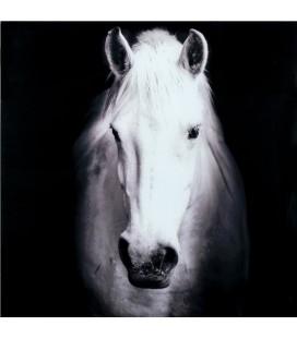 Cuadro de cristal caballo blanco