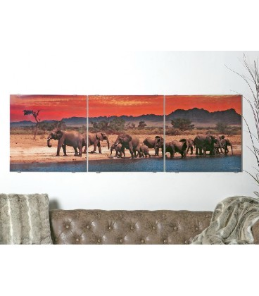 Cuadro cristal impreso elefantes