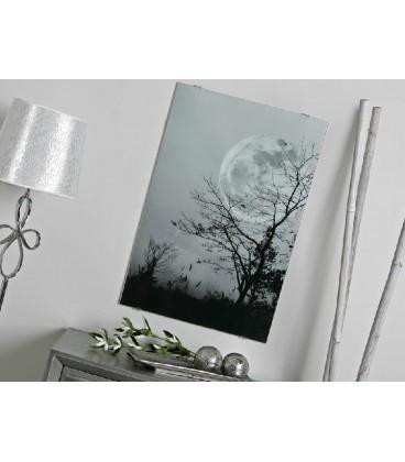 Cuadro Luna Llena blanco y negro
