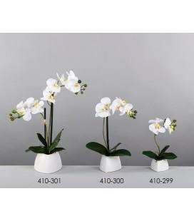 Planta decorativa orquídea blanca